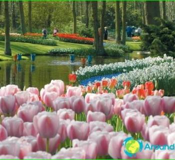 Праздники Нидерландов – традиции. Национальные праздники Нидерландов