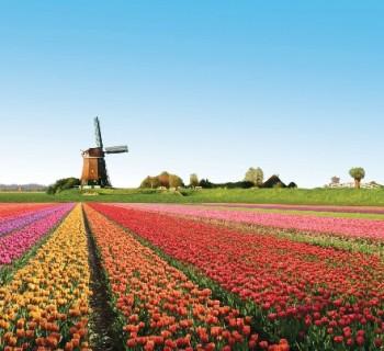 Голландия: фото, описание, интересные факты