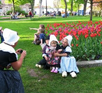 Парад цветов в Голландии - фото