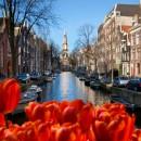 Туры в Голландию. Отдых в Голландии: фото, путевки