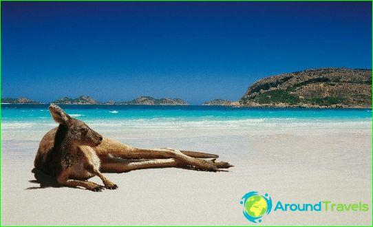 Australian rannat
