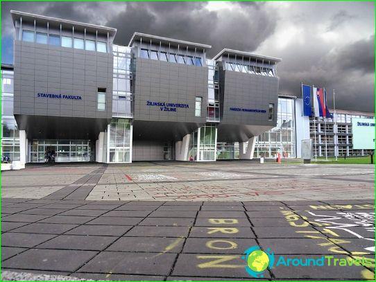 Образование в Словакия