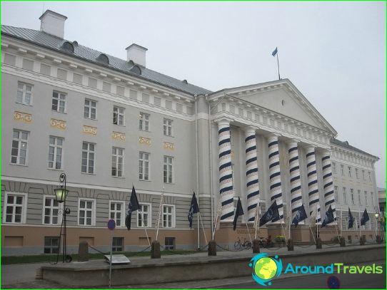 Образование в Естония