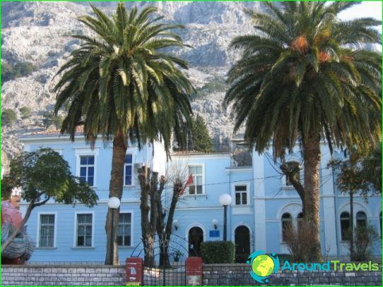 Onderwijs in Montenegro