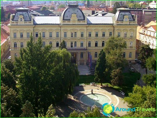 Образование в Словения