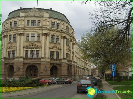 Образование в Сърбия
