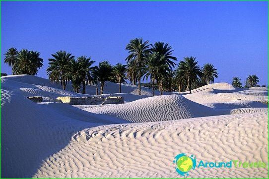أين تسترخي في تونس