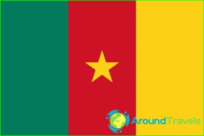 Знаме на Камерун