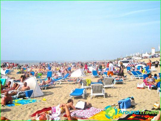 Amsterdamskie plaże