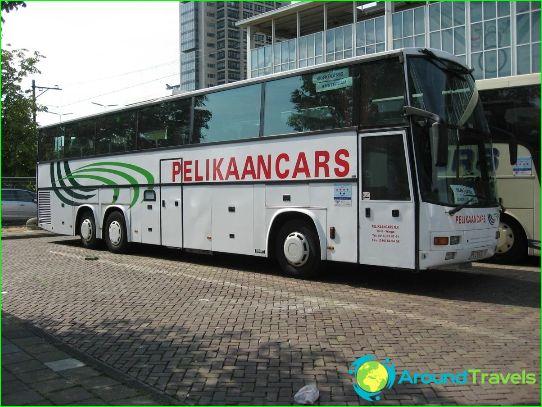 Автобусни турове в Бенелюкс