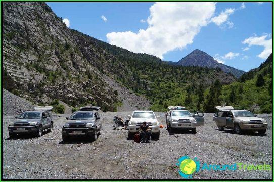 Коли под наем в Киргизстан
