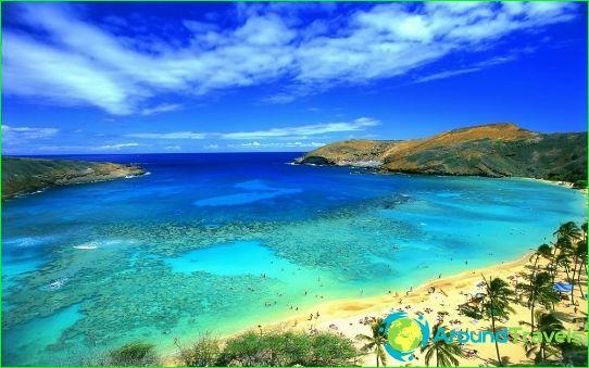 De beste resorts van Tunesië