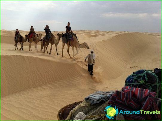 Обиколки в Тунис