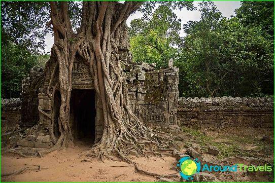 Lomat Kambodžassa marraskuussa