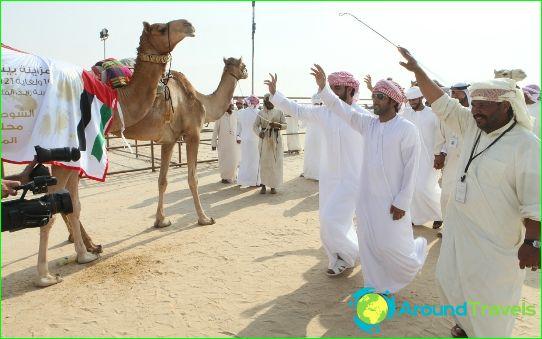 Arabiemiirikuntien kulttuuri