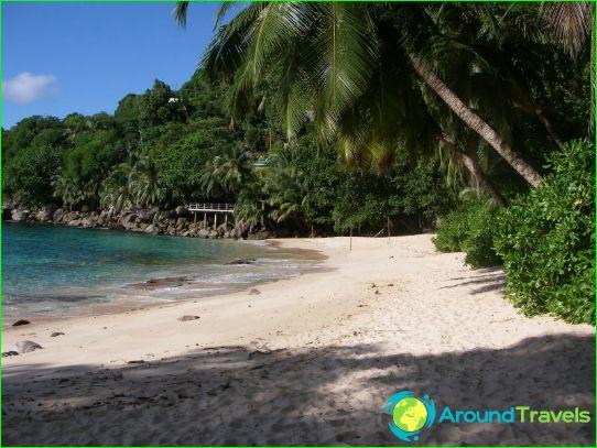 Празници на Сейшелите през ноември
