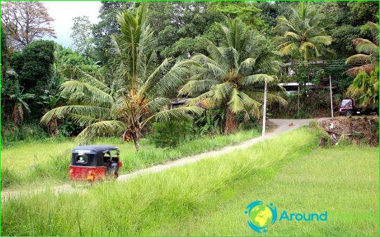 العطلات في سريلانكا في نوفمبر