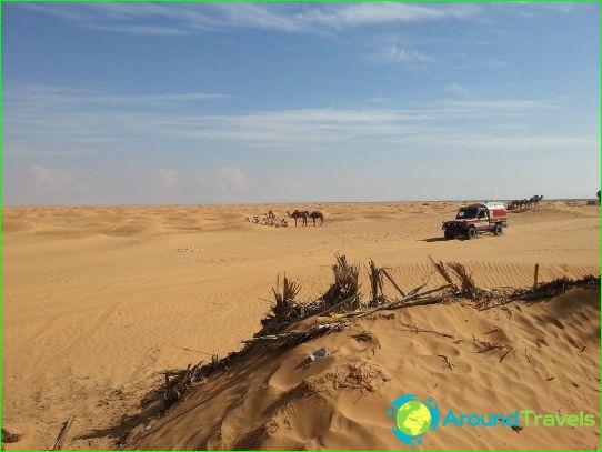 Vacances en Tunisie en novembre