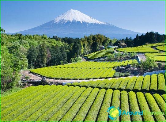 Japanin maakunnat