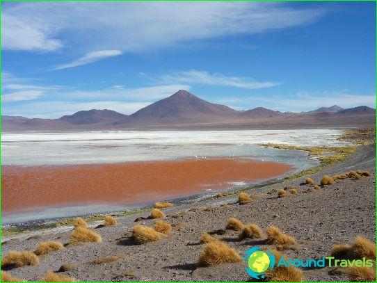 Argentiinan maakunnat