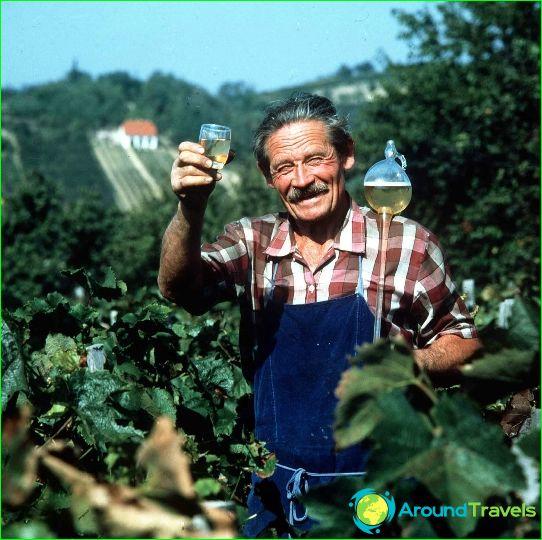 Wijnen van Hongarije