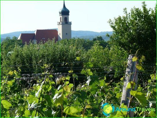Wijnen van Oostenrijk
