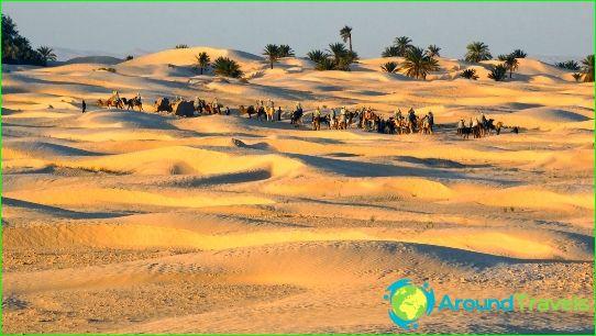 Lomat Tunisiassa