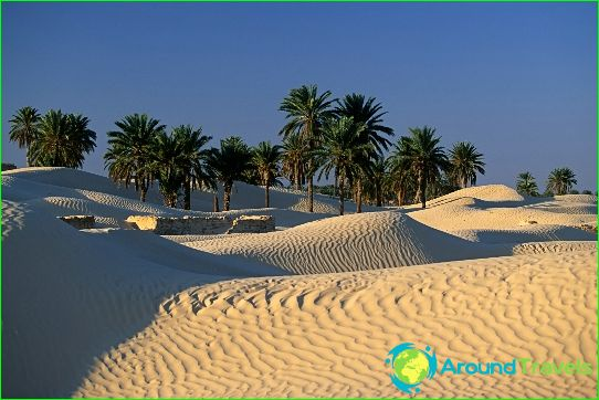 Retket Tunisiassa