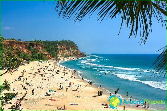 Tours in Goa