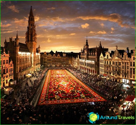 Tours in Brussel
