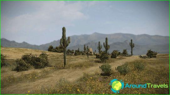 Vakantie in Mexico in mei