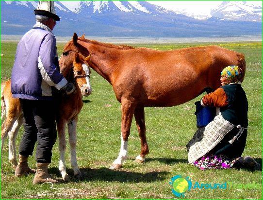 مناطق قيرغيزستان