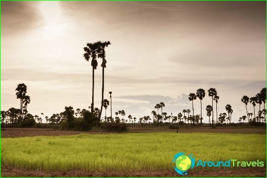 Vakantie in Cambodja in maart