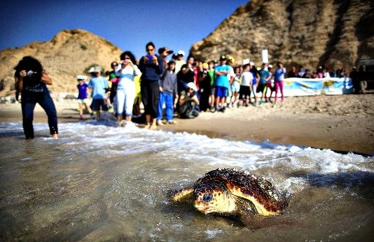 Vakantie in Israël met kinderen