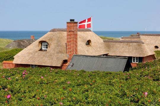 Tanskan ominaisuudet