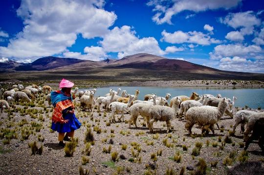 ملامح بيرو