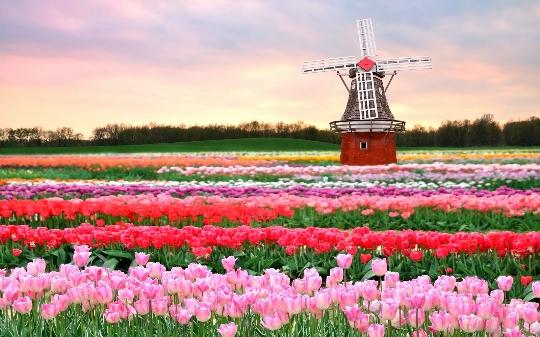Провинции на Холандия