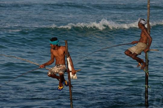 Sri Lankan perinteet
