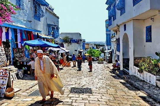 Reis naar Tunesië