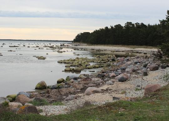 Kust van Estland