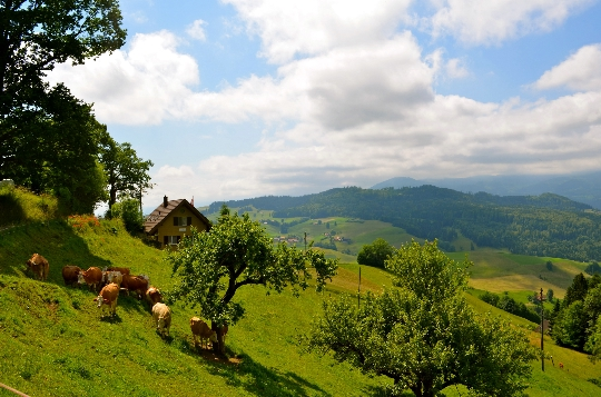 Vakantie in Zwitserland in mei