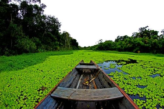Etelä-Amerikan joet