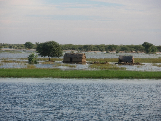 Niger Rivers