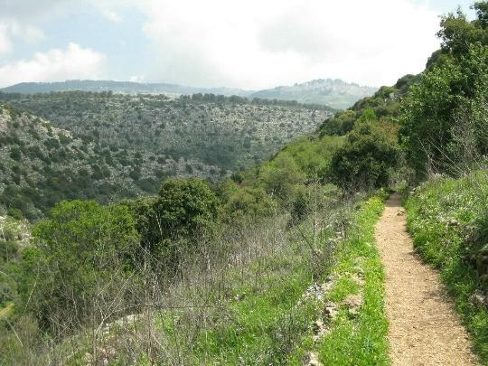 Israël Reserves