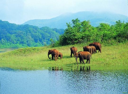 Natuurreservaten van India