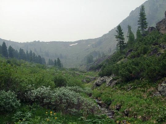 Kaukoidän luonnonsuojelualueet