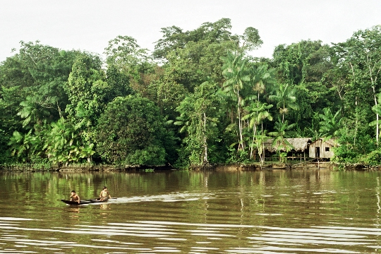 Бразилски реки