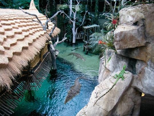 Hampurin eläintarha