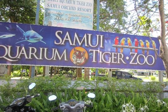 Zoo op Samui