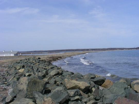 Sea Skosh